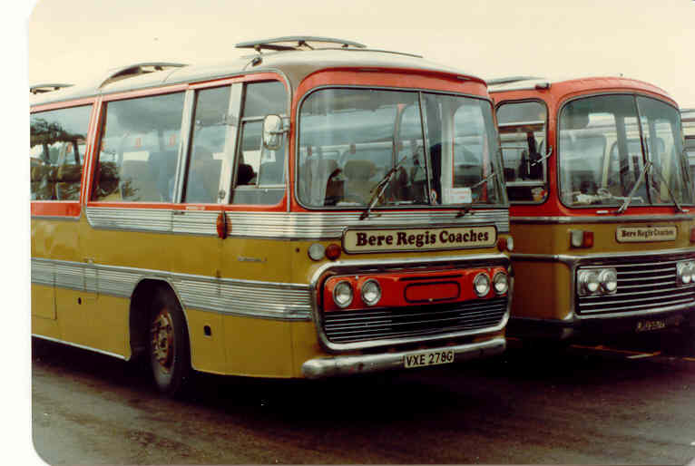 VXE 278G Leyland Panther