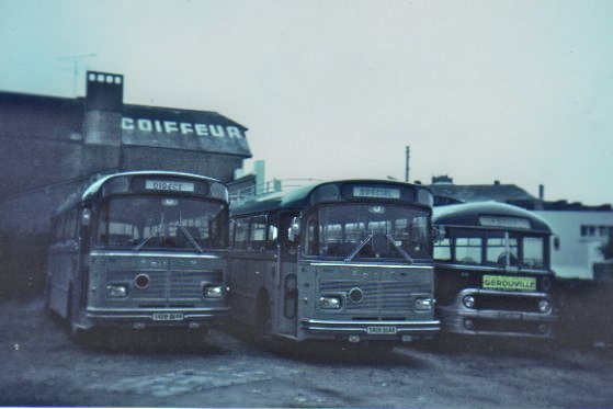 Drouin buses